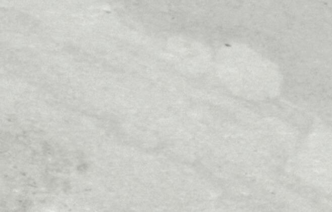 Artesia talne plošče – Bianco Antico